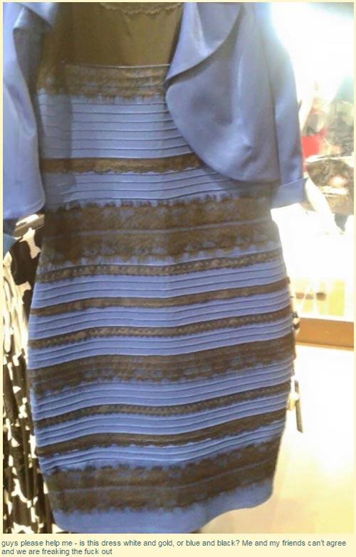 '파랑검정 vs 흰색금색' 드레스: 뜻밖의 전쟁