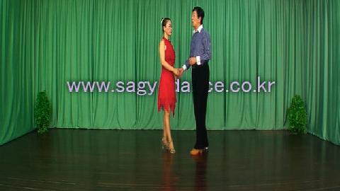 사교춤-사교댄스사교춤부르스동영상 댄스원사교댄스사교춤정통사교댄스사교춤배우기 이미지